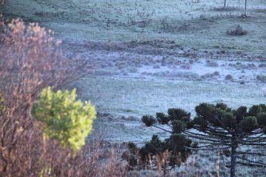 Dezembro começa com frio e geada de 0.6ºC na Serra Catarinense