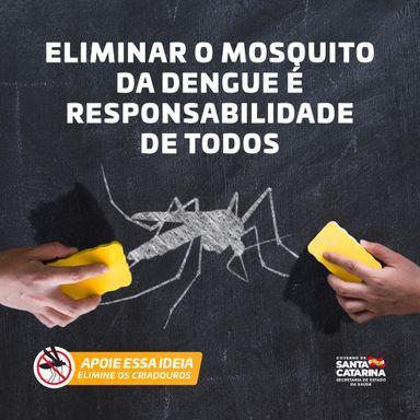 Programa de Controle da Dengue realizará recolhimento de entulho no Centro e Bairro Tobias