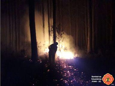 Incêndio em área de reflorestamento mobiliza bombeiros de Irani
