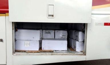 Carga era transportada na área de bagagem de um ônibus de turismo.