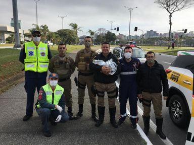 Policiais fazem parto de bebê em canteiro de avenida de Florianópolis