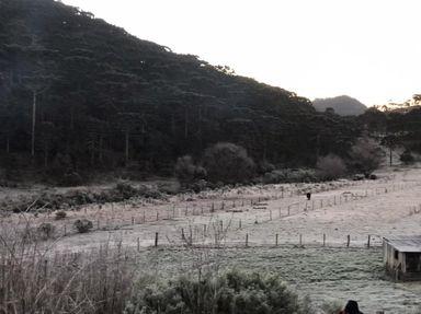 São Joaquim, na Serra de Santa Catarina, amanheceu com geada nesta sexta-feira (30)